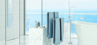 Guardian Glass ShowerGuard - bathroom and shower with frosted doors