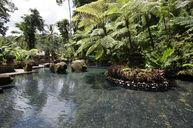 Holy Spring Water Pool