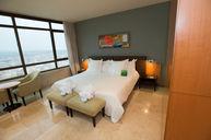 Attic Plus Room