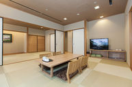 Japanese Special Room with Hot Spring (Stone Bath)