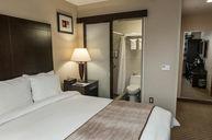 607- Elite Quuen Room with View