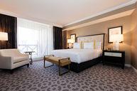 Luxury Executive Suite - Julius Tower