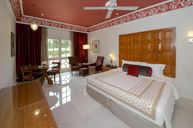 Luxury Room With Garden