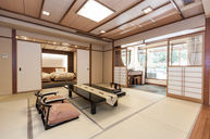 Modern Japanese Room with Outdoor Bath