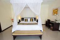 One-Bedroom Luxury Villa