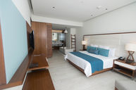 Opus Governor Suite