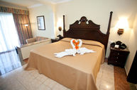Junior Suite with One King Bed