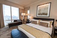 Premier Central Park View Room