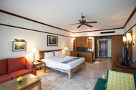 Premier Room with Pool Access