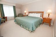 Premium One King Room