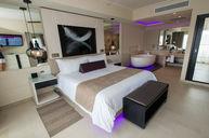 Presendtial Luxury Junior Suite -- Diamond Club