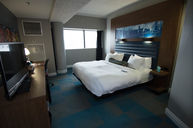King Savvy Suite