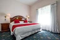 Senior Suite with Terrace