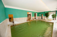 SpaThermal Pool (PRE-RENOVATION)