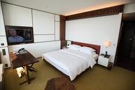 Standard Andaz King Room