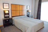 Standard Double Room with Terrace