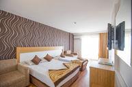 Standard Large Room