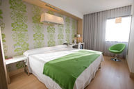 Standard Room #709