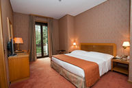Standard Room #315