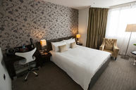Executive Double Room with Handicap Accessibility