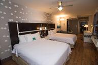 Studio Two Queen Beds