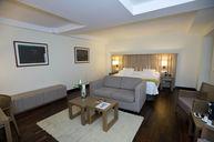 Suite Room 301