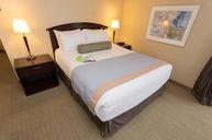 Superior Queen Bed Room