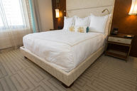Biltmore Oceanview Room