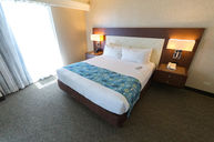Oceanview Guestroom With Balcony