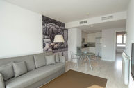 One Bedroom Apartment with Terrace
