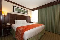 One Bedroom Suite (City View)