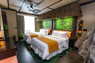Polynesian Themed Room