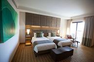 Premier Room Twin