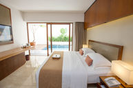 Premier Room with Private Pool & Pool Access
