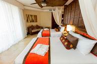 Premium Deluxe Tropical View Room