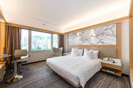 Premium Deluxe Room (alternative)