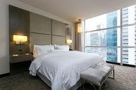 Renewal Suite