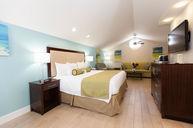 Sensational Silver Suite