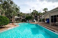 Springs Pool