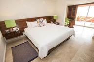 Standard Oceanview King Room