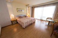 Superior Double Room (Málaga Tower)
