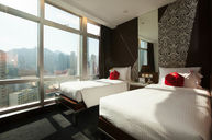 Superior Greenery View Twin Room