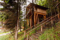 Tree House E