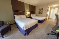 Two Double Bed Executive Room