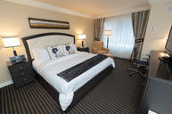 Classic Room (One King Bed)