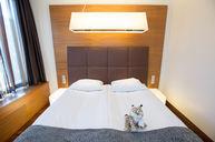 Comfort M Room