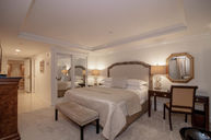Contemporary Grand One Bedroom Suite