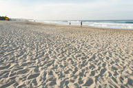 Beach (Off Site)