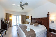 Standard Double Room (King Bed)