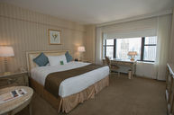 Executive City View Room - Queen Bed